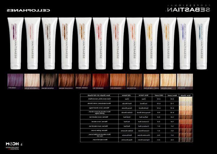 Sebastian Cellophane Color Treatment 300ml 10.1oz Combo