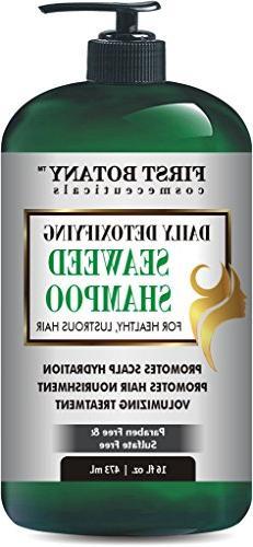 Seaweed Shampoo 16 fl oz, Daily Anti Hair loss, Hydrating, D