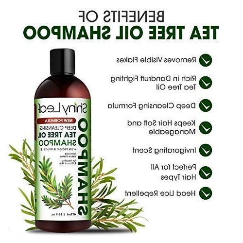 Tea Tree Shampoo and Detoxify Cleanse Hair & Color Hair, Dry Scalp Head