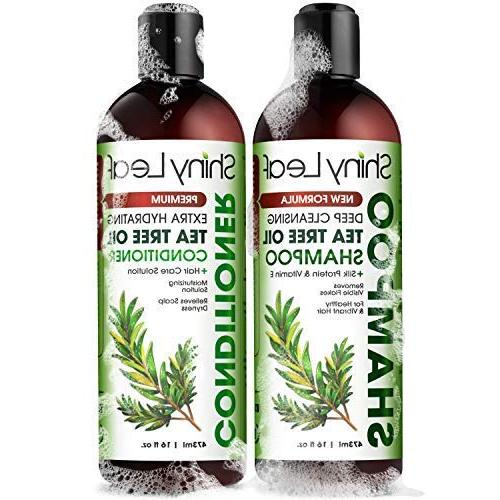 Tea Oil and Conditioner Anti-Dandruff & Scalp, Color Treated Hair, Scalp Head